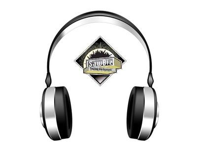sawbiz.gr headphones